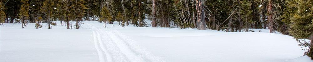 Headwaters Trails Alliance – Progressive Ski Dinner February 28th